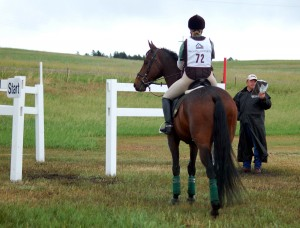 Improved Posture for the Rider, Specific Exercise for The Busy Equestrian Athlete,
